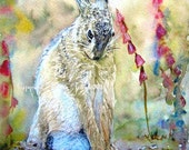 Shy Hare Beautiful Giclee Print of  Watercolour and Ink Painting on Watercolour Paper