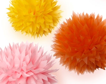 Tissue Paper Pom poms Set of 14
