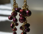"Free Shipping In U.S. """""""""""""""""""""" Deep Burgundy Pearl Cluster Earrings on Gold Wires. Dangling Wine and Dark Plum Purple Pearl Earrings."