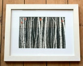 Silver Birches Illustration Art print A4