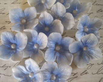 "Blue Sugar Hydrangeas ""By The Dozen"""