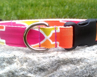 Raspberry Sorbet 1 Inch Width Dog Collar