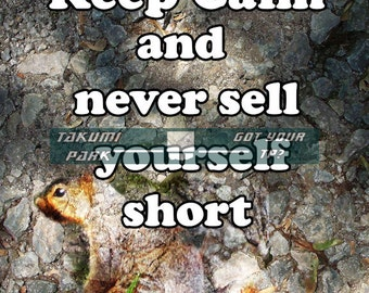 Cute quote pictures, keep calm artwork, words of wisdom, motivational art, animal art decor, squirrel art, quote art, Inspirational quote