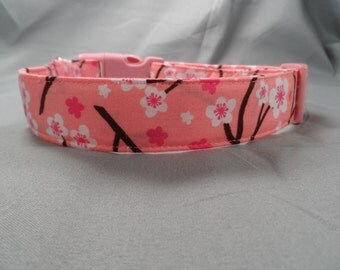 Cherry Blossoms on Pink Dog Collar