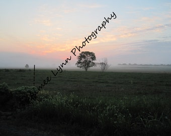 Foggy Sunrise - Fine Art Photography