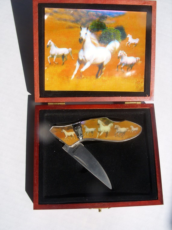 Stainless Steel Collectible Pocket Knife in a Case Picturing White Running Horse