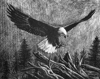 """Lithograph print """"Eagle"""" A pen and ink on scratchboard drawing of an american bald eagle in flight"""
