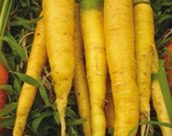 Yellow Carrot seeds, Organic