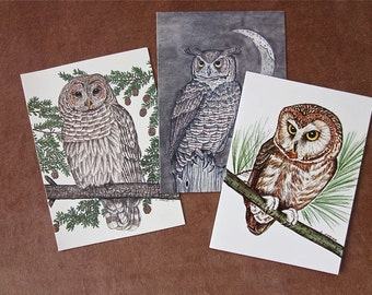 Owl Note Card Assortment - Recycled Paper for Any Occasion, Barred Owl, Great Horned Owl, and Saw-Whet Owl