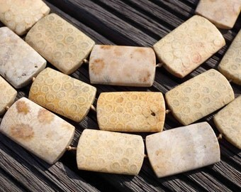Indonesian Agatized Fossil Coral 36-38mm long rectangular beads (ETB00087)