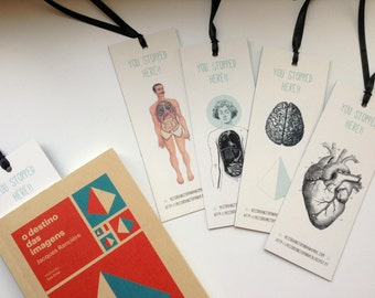 Bookmarks - Anatomy