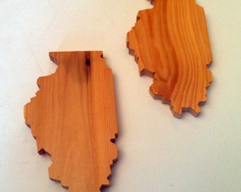 Solid wood Illinois drink coasters (set of 4)