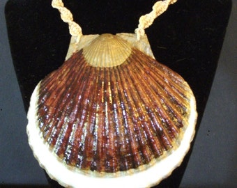 Tortoise Brown and Gold Big Shell Necklace