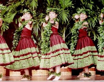 Custom Design Hawaiian Hula Dress