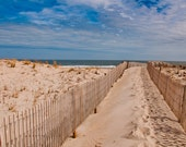 Path to the Atlantic at Cape Henlopen State Park, Delaware. - Beach Nature Photography Fine Art Print or Gallery Wrap Canvas - AppalachianViews
