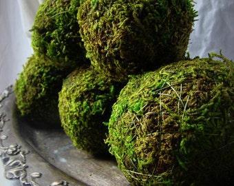 Moss Balls, 4'' Moss Balls, Bowl Filler, Natural Moss Balls, Moss Decor