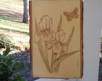 Iris With Butterfly Woodburning Pyrography