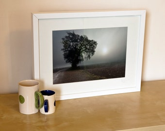 """Foggy Trees - Limited Edition Framed Photograph 13x17"""" Frame Size"""