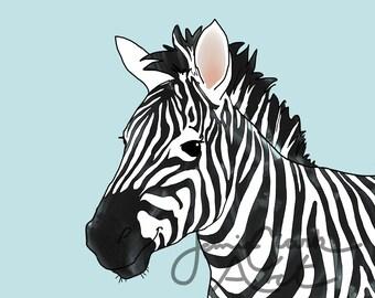 Baby Zebra Print, FREE Shipping