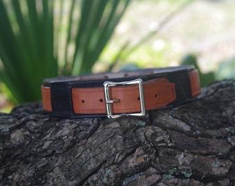 Black & Brown Leather Dog Collar