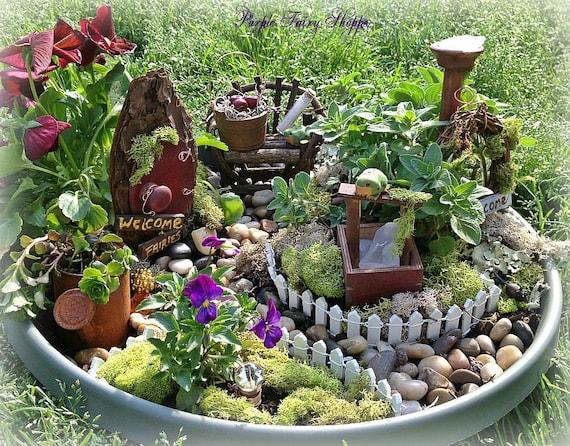 Fairy Garden Kit Life Unexpected No Maintenance Fairy Garden