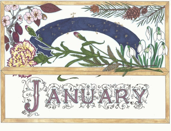 January Birthday Card with January Flowers by Illumination LLC