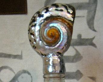 Shell Bottle - Newport Series No. 5