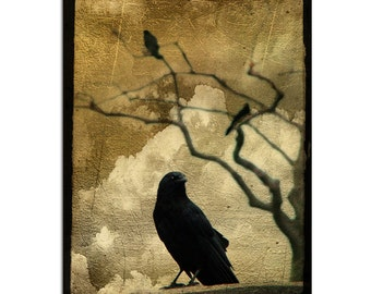 Corvus, Crow, Corvidae, Fine Art Collage, Raven Print, Clouds, Surreal, Blackbird - King Crow