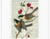 Audubon Chickadees print