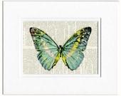 butterfly, aqua blue print