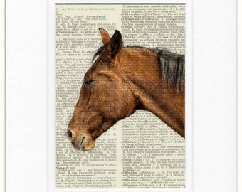 horse portrait dictionary page print