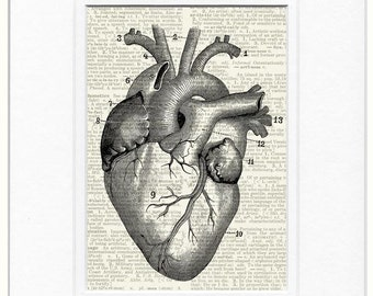 heart dictionary page print