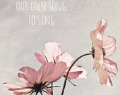 Pink cosmos flower photo, inspirational, typography, pastel pink, pale blue sky, nature photography - We all have our own song to sing