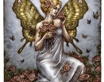 Rose Fairy, Post Card by Renae Taylor