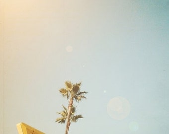 BUY 2 GET 1 FREE Palm Trees, California Photography, Food, Restaurant, Retro Inspired, fpoe, Sky, Blue, Green, Wall Decor - In & Out