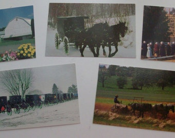 Set of 5 Ohio's Amish Country Souvenir Post Cards