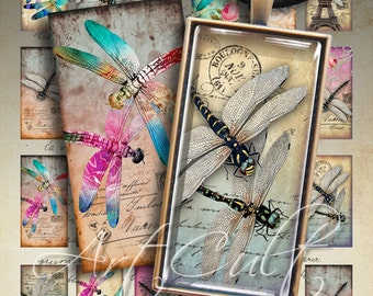Printable images DRAGONFLY DOMINOES 1x2 inch Digital Collage Sheet Art Cult Downloads for pendants magnets bezel cabs paper decoupage
