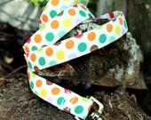 Funfetti - Multi Colored Polka Dot Dog Leash