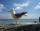 Seagull knitting pattern - small Herring Gull