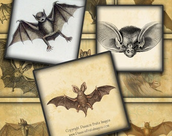 "Antique Bat Images Digital Collage Sheet-  2"" Squares-- Instant Download"