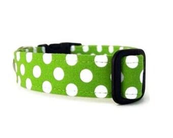 Polka Dot Dog Collar - White Dots on Lime