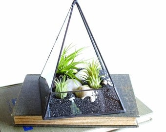 Air Plant Terrarium, Glass Pyramid Terrarium Planter. Terrarium Kit, Glass Terrarium. Geometric Terrarium, Desk Decor