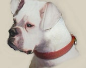 Custom  Dog Portrait 8 x 10 Pastel on Paper from your photo