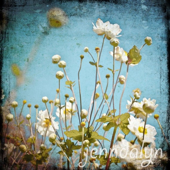 white flowers blue sky fall photography autumn photo nature growing 8 x 10 TTV PHOTO turquoise sky floral home decor