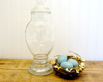 10 inch Tall Drugstore Type Apothecary Candy Jar