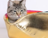 Pot of Gold a Rainbow Cat Canoe for the Modern Kitty