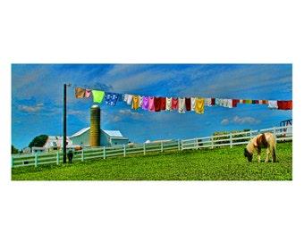 Pennsylvania Dutch Farm Landscape Photograph Laundry Line Color Photography Amish Colorful Panoramic Art Print Blue Green 5X15