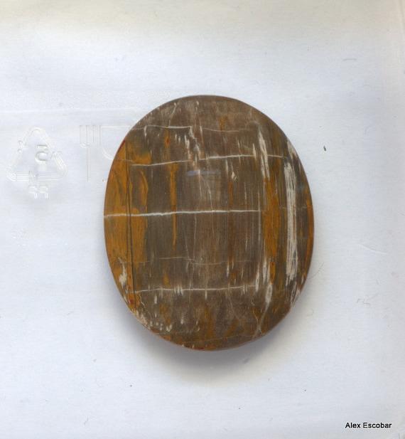 Petrified Wood fossil oval cabochon