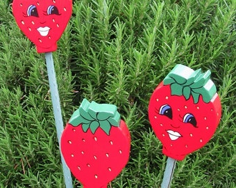 Strawberry Double Sided Wooden Garden Personality Plant Markers