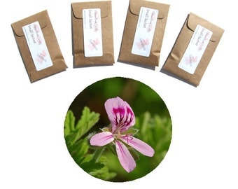 Rose Geranium Sachets Personalized Gift Favors Christening Rustic Mothers Day Brown Kraft Color Choice Seed Packets Rustic Decor Rose Sachet